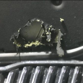 poškození auta od kuny